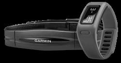 Garmin Vivofit Monitor