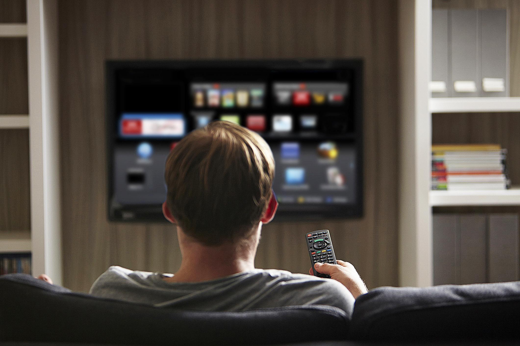 Vizio TV fines