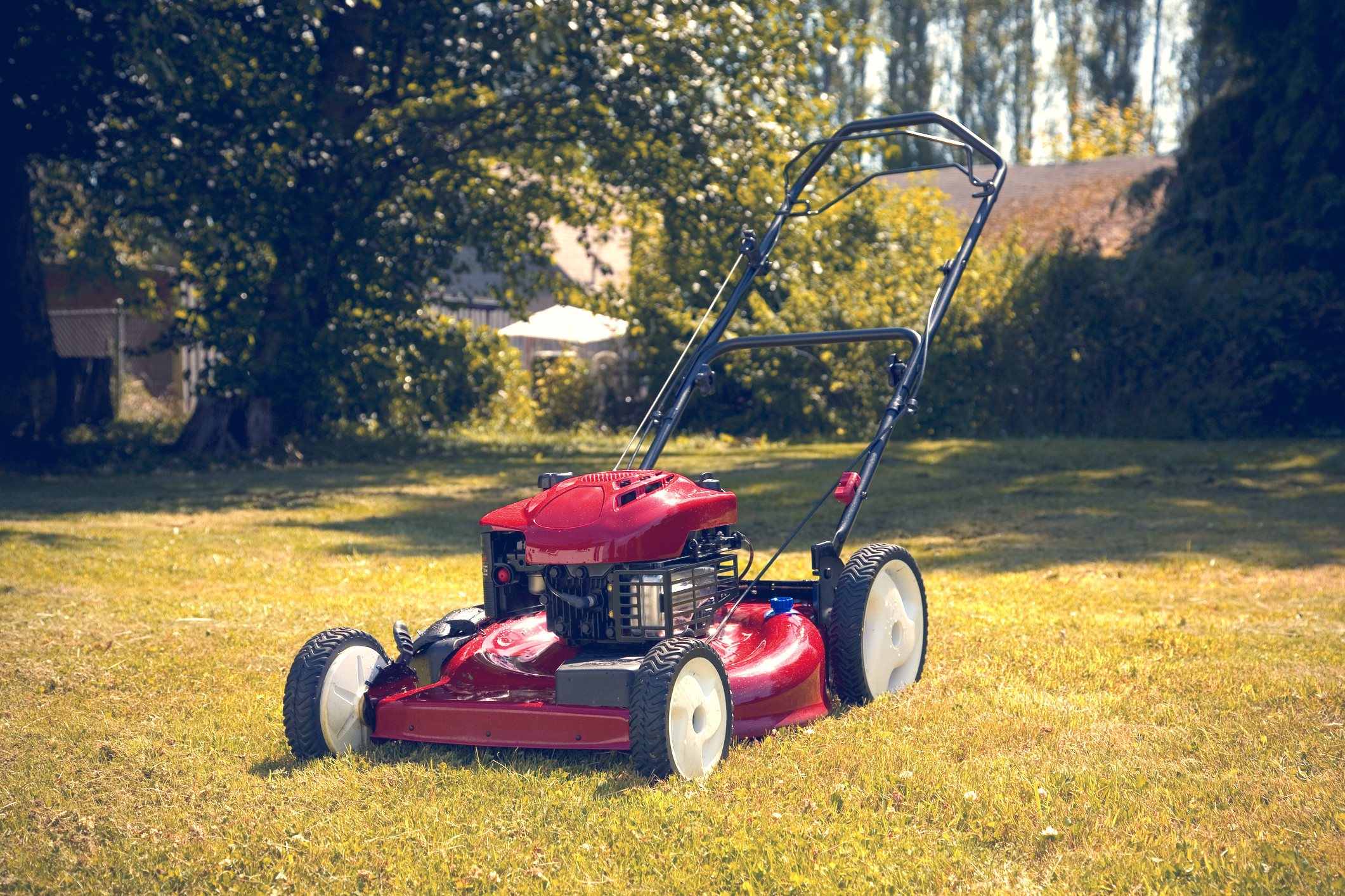 red lawn mower in yard