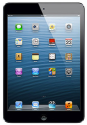 Apple iPad mini 64GB WiFi Tablet + pickup at MicroCenter