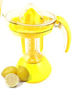 The Perfect Lemonade Maker