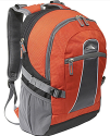 High Sierra Elevate Laptop Daypack