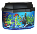 Hawkeye 5-Gallon Aquarium Kit