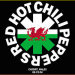 "Red Hot Chili Peppers ""Live"" MP3 Album for free"