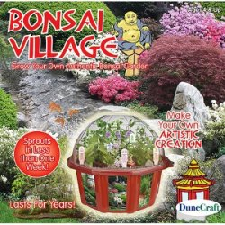DuneCraft Bonsai Village Garden Kit for $19