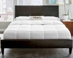 Premier Zurich Full Upholstered Platform Bed $150
