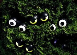 Peepers Halloween String Lights 3-pack for $13