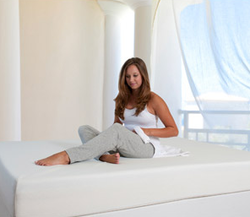 "Spa Sensations 6"" Memory Foam Mattress !!from $109!! + free shipping"