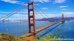 TripAdvisor San Francisco Thanksgiving Sale: Rooms !!from $87 per night!!