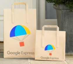 Google Express 6-Month Membership, $20 Credit $5